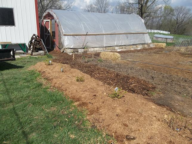 Sawdust | Chism Heritage Farm