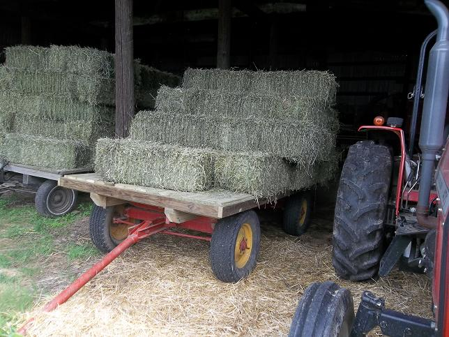 Image result for boys on hay wagon farm