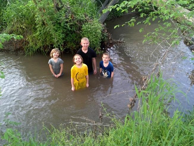 CreekSwim